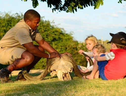 crianças brincando no safari