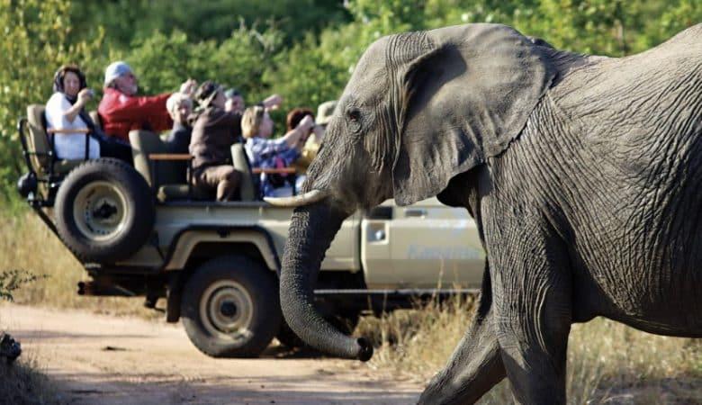 safari no Kapama